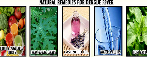 home-remedies-dengue